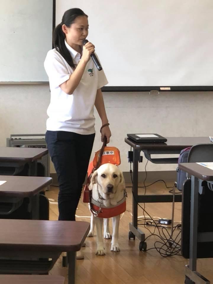 盲導犬教室